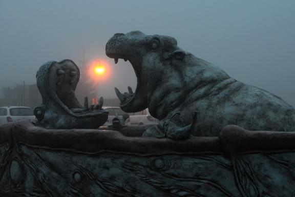 Hotel U Hrocha, ranní mlha