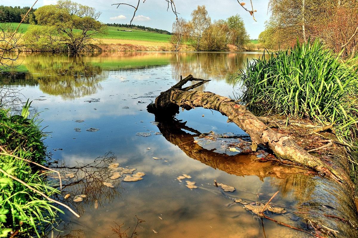 Rybník na Okřešovickém potoku