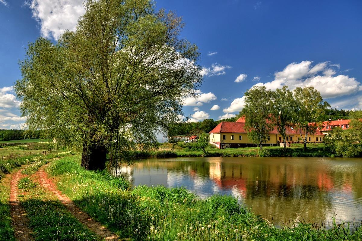 Němčický dvůr a soukromý rybník