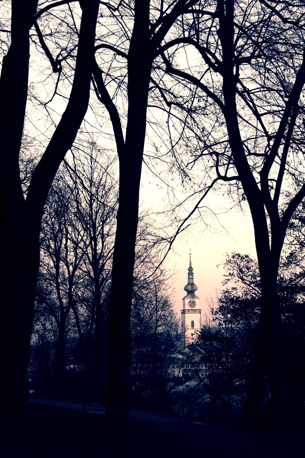 Sv. Martine, kde máš ten sníh, ty hade!