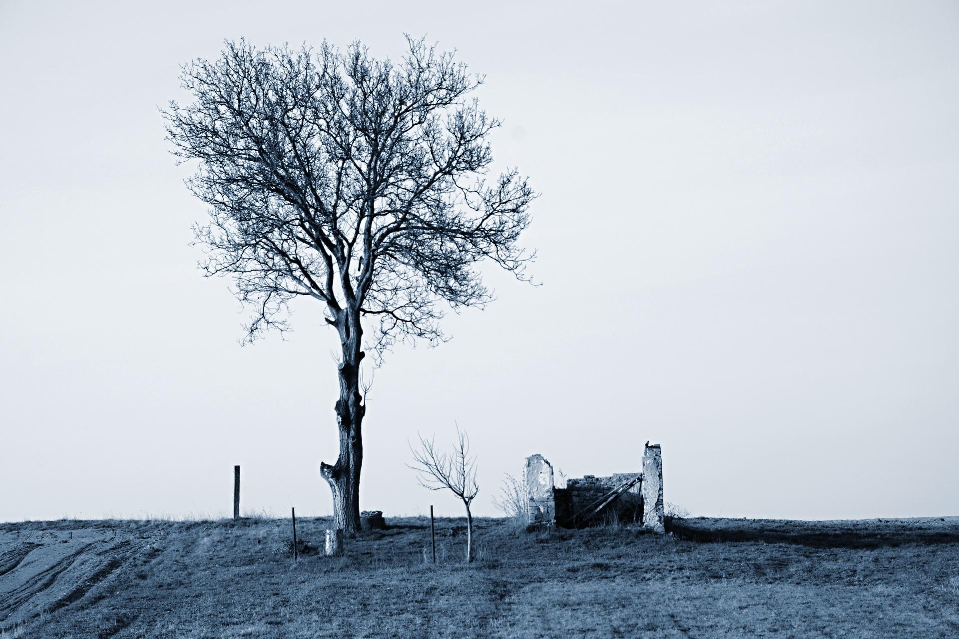 Na Starým Mohelně